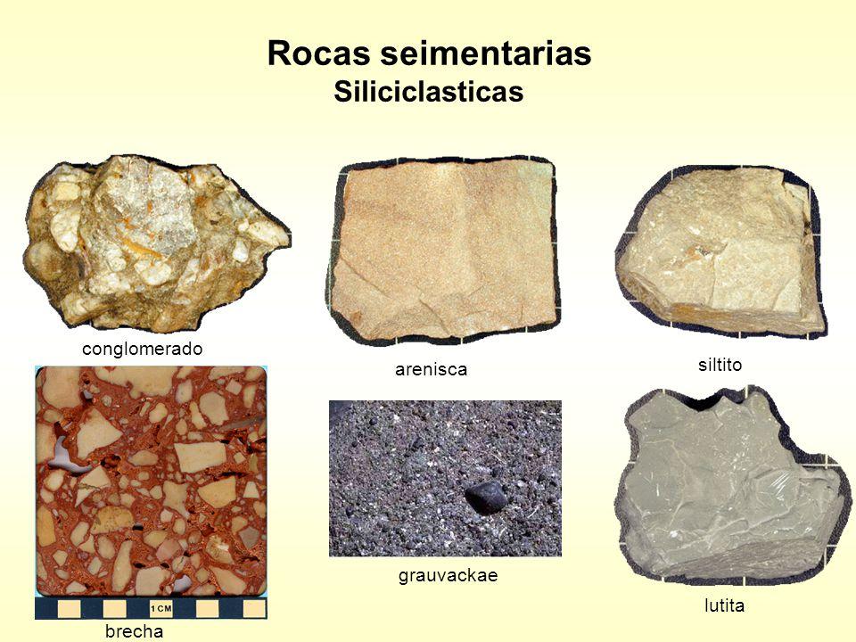 Rocas seimentarias Siliciclasticas conglomerado arenisca siltito brecha grauvackae lutita