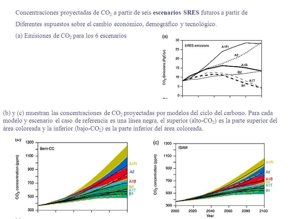 (b) y (c) muestran las concentraciones de CO 2 proyectadas por modelos del ciclo del carbono. Para cada modelo y escenario el caso de referencia es un