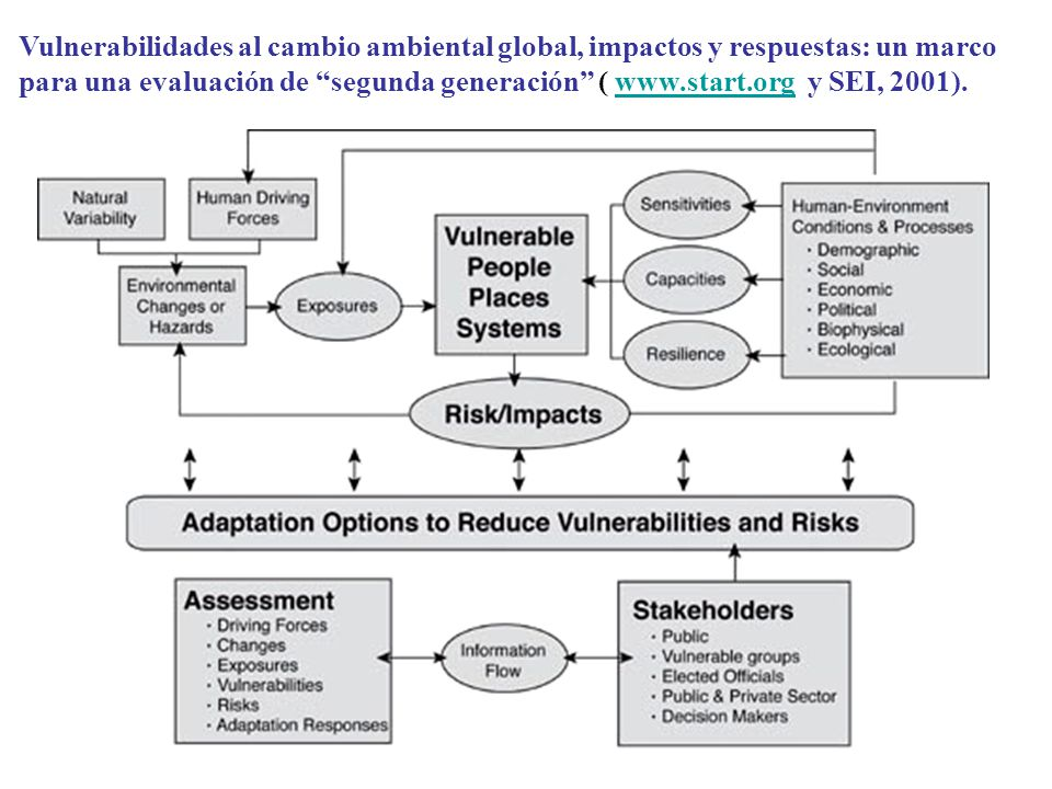 Vulnerabilidades al cambio ambiental global, impactos y respuestas: un marco para una evaluación de segunda generación ( www.start.org y SEI, 2001).ww