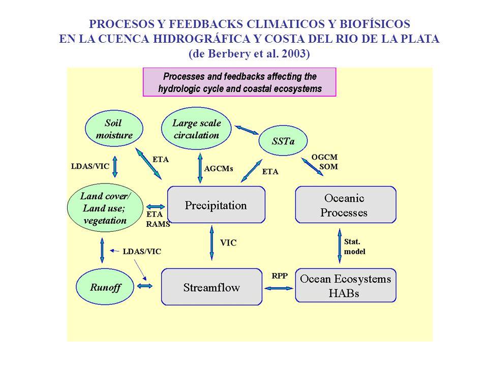 PROCESOS Y FEEDBACKS CLIMATICOS Y BIOFÍSICOS EN LA CUENCA HIDROGRÁFICA Y COSTA DEL RIO DE LA PLATA (de Berbery et al. 2003)