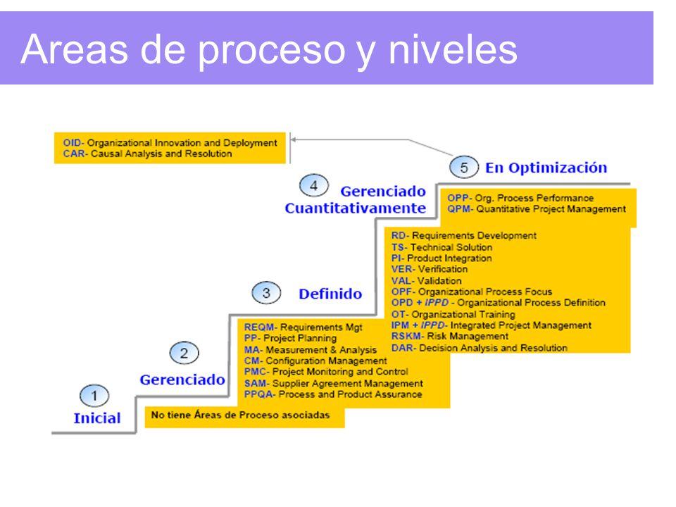 Areas de proceso y niveles