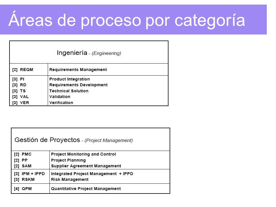 Áreas de proceso por categoría Representación Continua