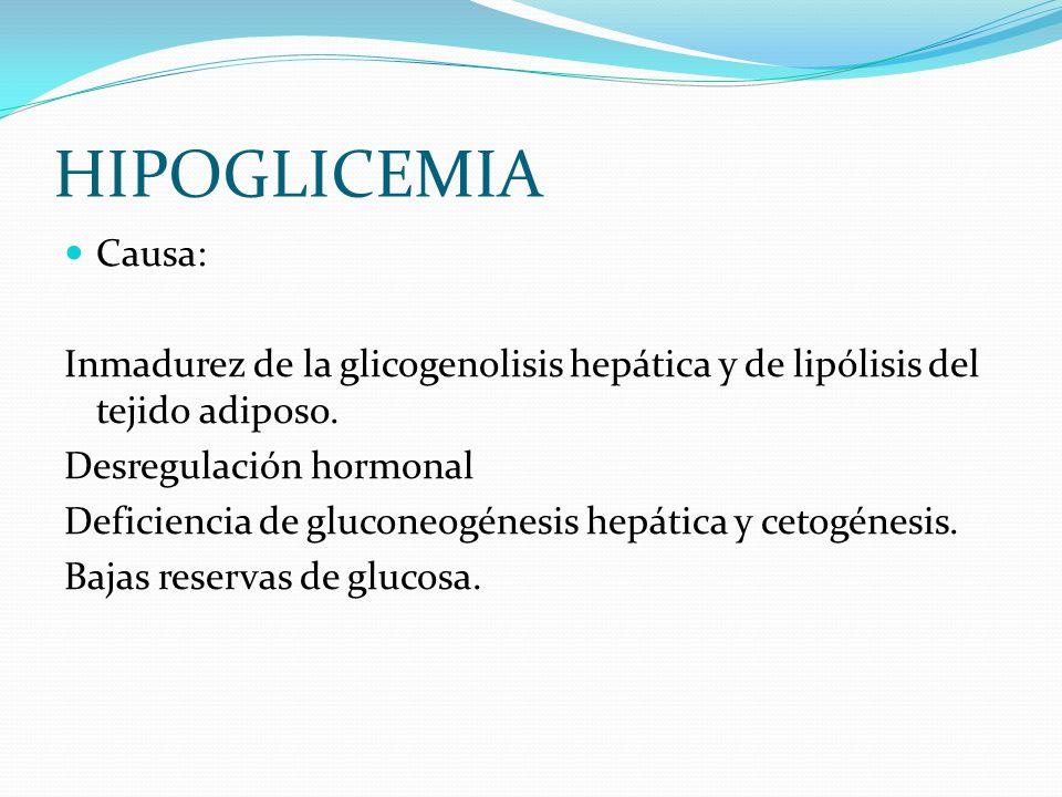 HIPOGLICEMIA Causa: Inmadurez de la glicogenolisis hepática y de lipólisis del tejido adiposo. Desregulación hormonal Deficiencia de gluconeogénesis h
