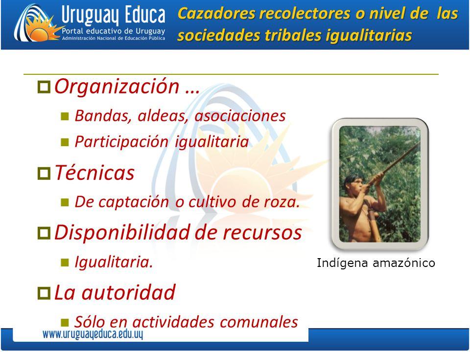 Cazadores recolectores o nivel de las sociedades tribales igualitarias Organización … Bandas, aldeas, asociaciones Participación igualitaria Técnicas