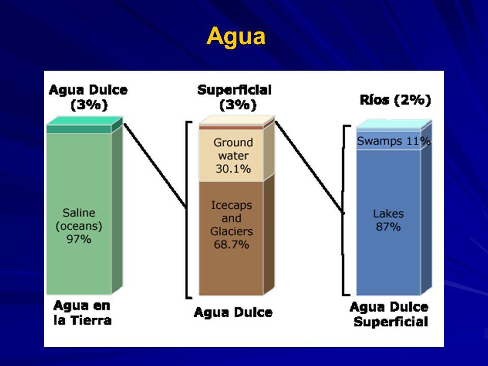 Water source Percent of fresh water Percent of total water Oceans, Seas, & Bays--96.5 Ice caps, Glaciers, & Permanent Snow 68.71.74 Groundwater--1.7 Fresh30.10.76 Saline--0.94 Soil Moisture0.050.001 Ground Ice & Permafrost0.860.022 Lakes--0.013 Fresh0.260.007 Saline--0.006 Atmosphere0.040.001 Swamp Water0.030.0008 Rivers0.0060.0002 Biological Water0.0030.0001 Total-100