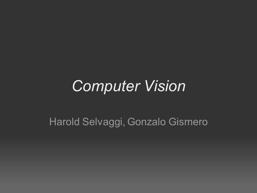 Computer Vision Harold Selvaggi, Gonzalo Gismero