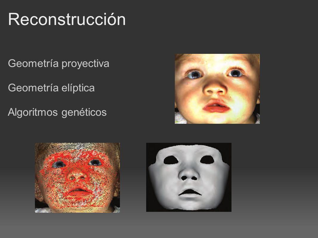 Reconstrucción Geometría proyectiva Geometría elíptica Algoritmos genéticos