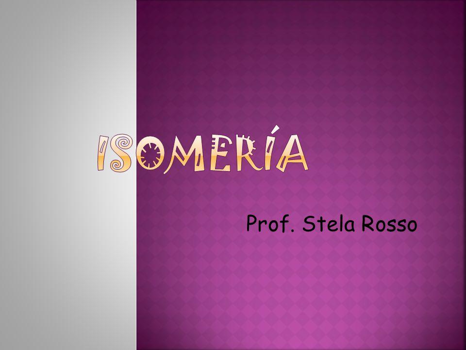 Prof. Stela Rosso