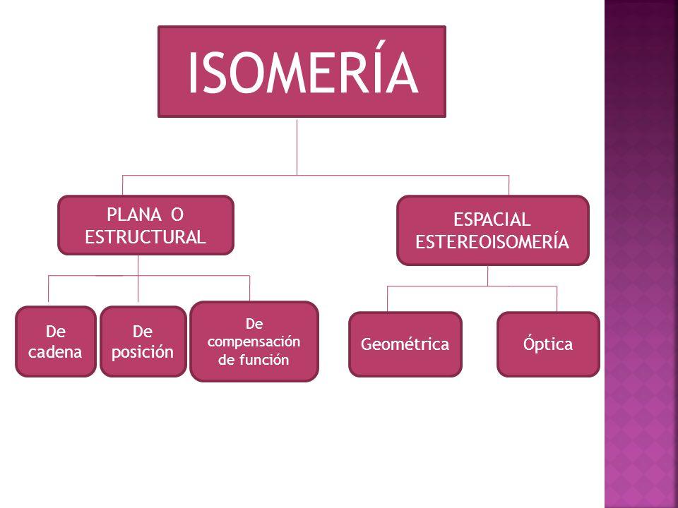 ISOMERÍA PLANA O ESTRUCTURAL ESPACIAL ESTEREOISOMERÍA De cadena De posición De compensación de función GeométricaÓptica