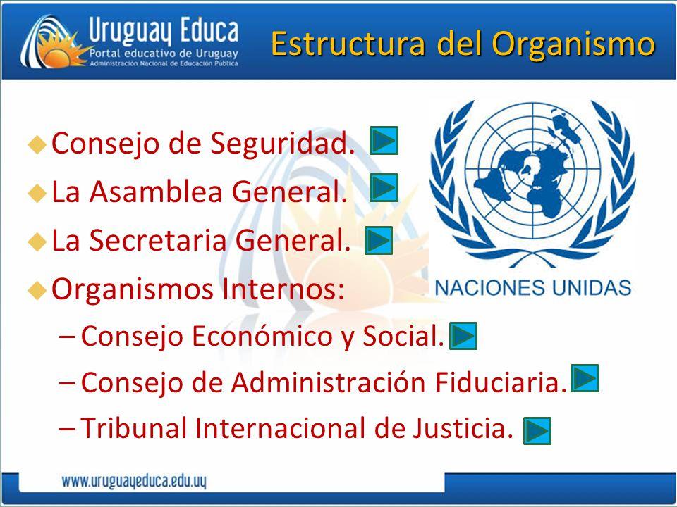 Estructura del Organismo Consejo de Seguridad. La Asamblea General. La Secretaria General. Organismos Internos: –Consejo Económico y Social. –Consejo