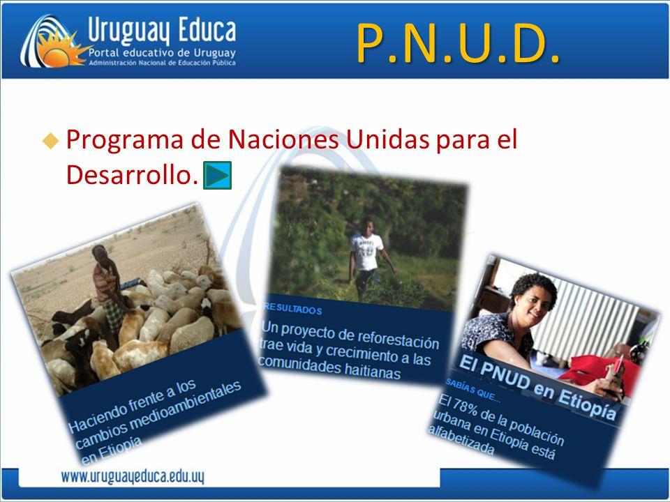 P.N.U.D. Programa de Naciones Unidas para el Desarrollo.