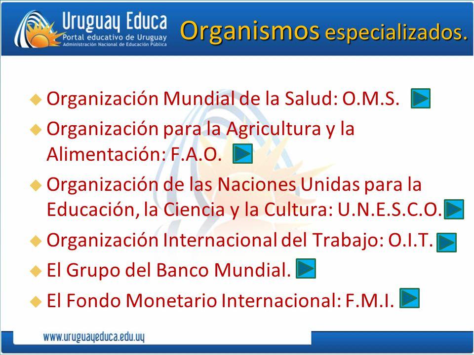 Organismos especializados. Organización Mundial de la Salud: O.M.S. Organización para la Agricultura y la Alimentación: F.A.O. Organización de las Nac