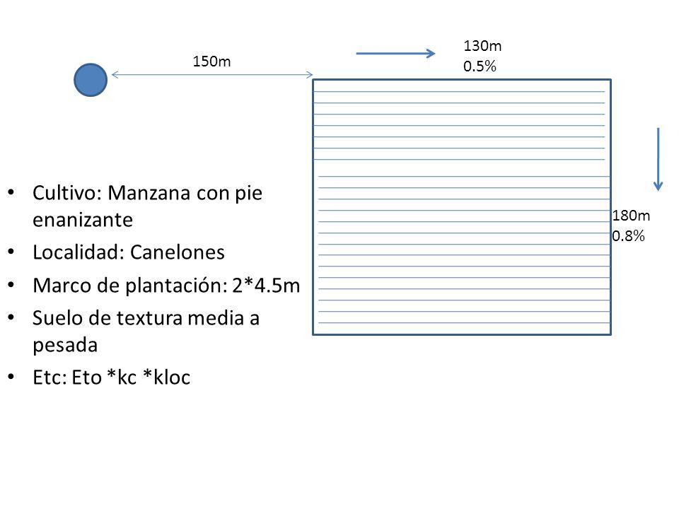 150m 130m 0.5% 180m 0.8% Cultivo: Manzana con pie enanizante Localidad: Canelones Marco de plantación: 2*4.5m Suelo de textura media a pesada Etc: Eto
