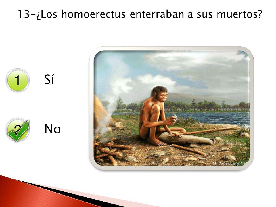 Sí No 13-¿Los homoerectus enterraban a sus muertos?