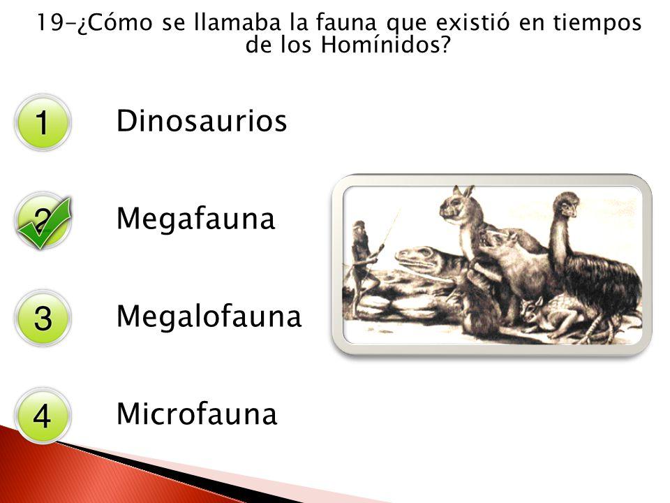 19-¿Cómo se llamaba la fauna que existió en tiempos de los Homínidos? Dinosaurios Megafauna Megalofauna Microfauna