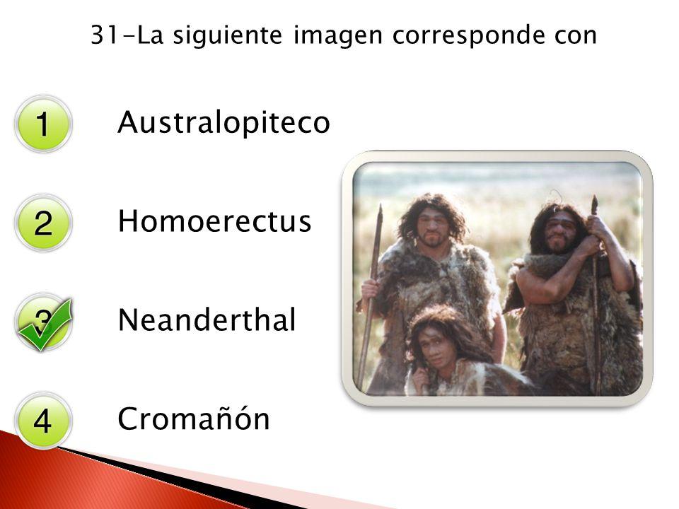 31-La siguiente imagen corresponde con Australopiteco Homoerectus Neanderthal Cromañón