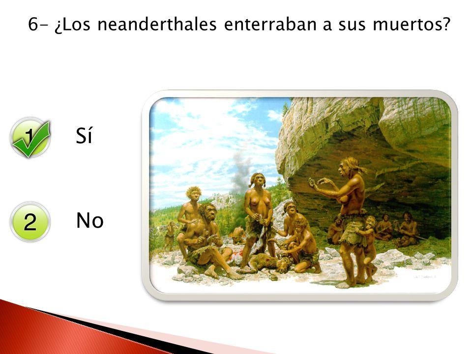 Sí No 6- ¿Los neanderthales enterraban a sus muertos?