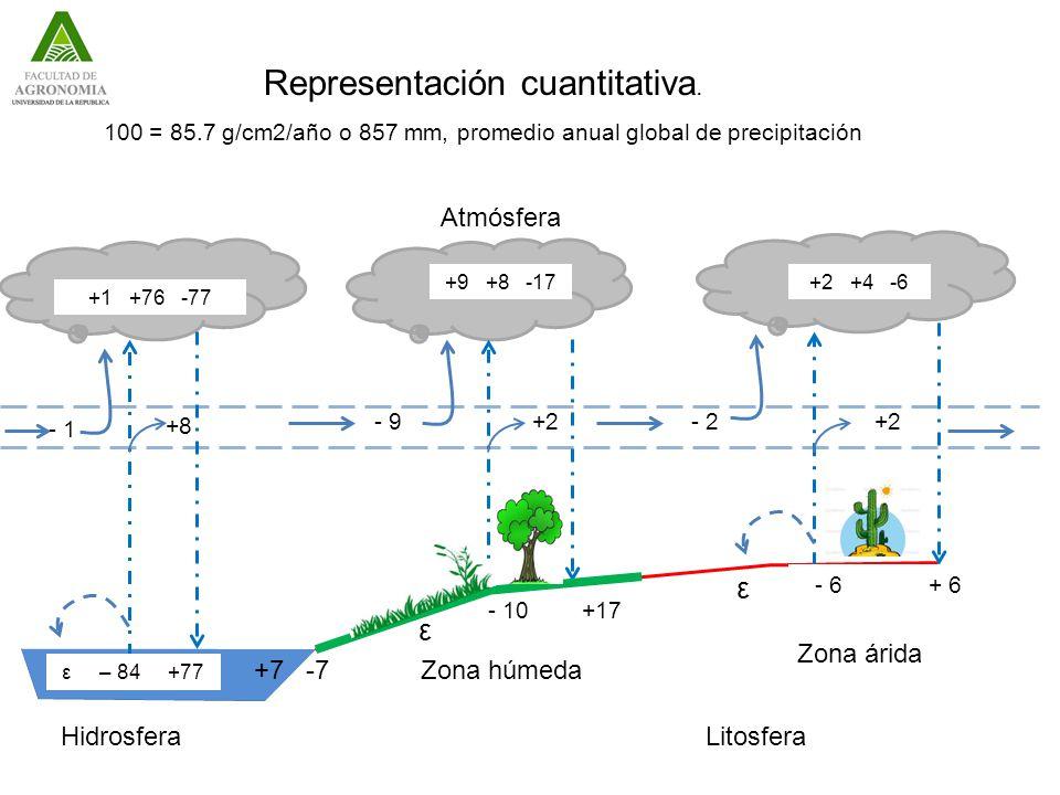 +2 +4 -6+9 +8 -17 +1 +76 -77 +2- 9 +8 - 1 +2- 2 ε – 84 +77 - 10 +17 ε +7 -7 ε - 6 + 6 LitosferaHidrosfera Zona húmeda Zona árida Representación cuantitativa.