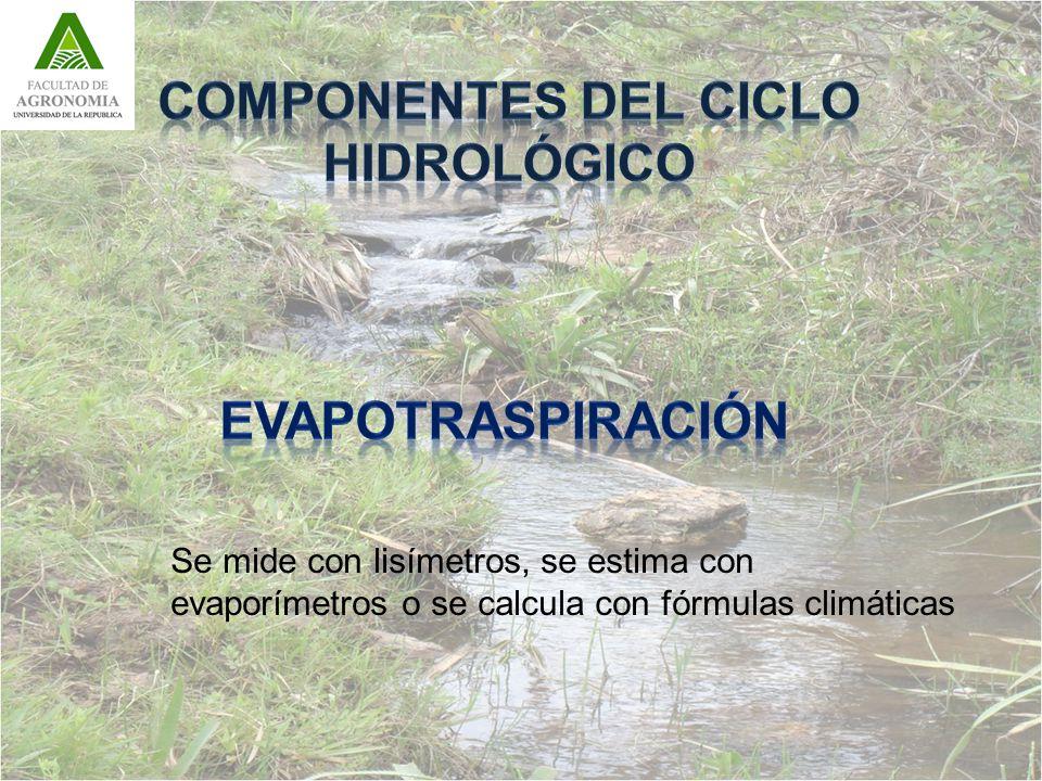Se mide con lisímetros, se estima con evaporímetros o se calcula con fórmulas climáticas