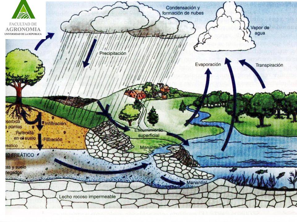 Se mide con pluviómetros y pluviógrafos Se caracteriza la intensidad, cantidad y distribución