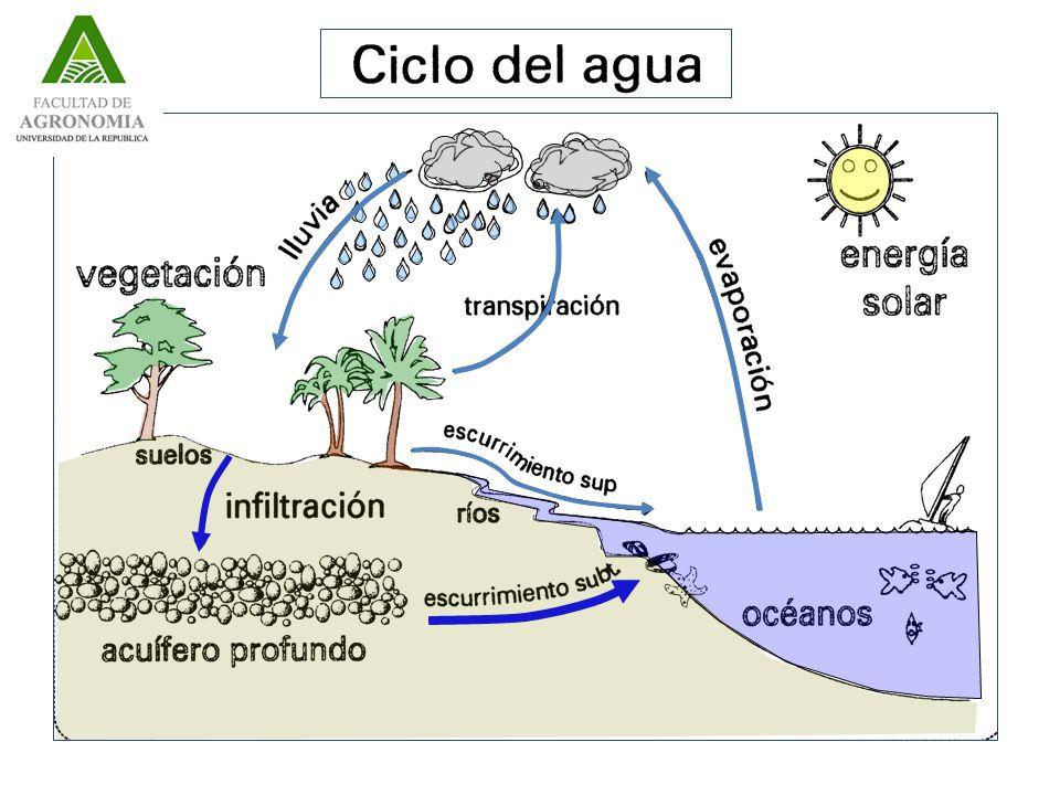 Curso de riego- Licenciatura en Paisajismo 1.Ciclo Hidrológico 1.1 Introducción 1.2 Descripción a del Ciclo Hidrológico 1.3 Ecuación Fundamental de la Hidrología y balance de un sistema 2.Cuenca de recepción 2.1 Concepto 2.2 Características de las cuencas Área Forma Pendiente Densidad de drenaje