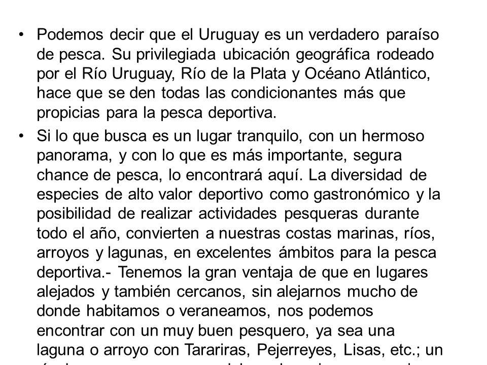 Podemos decir que el Uruguay es un verdadero paraíso de pesca. Su privilegiada ubicación geográfica rodeado por el Río Uruguay, Río de la Plata y Océa