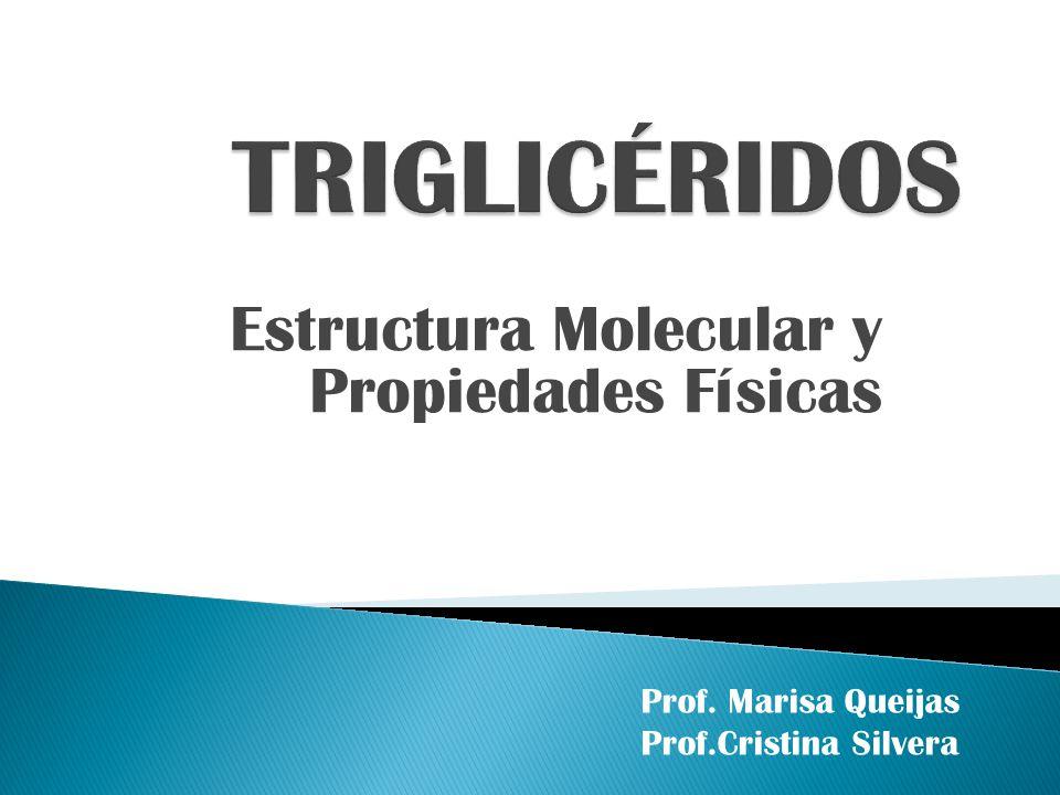 Estructura Molecular y Propiedades Físicas Prof. Marisa Queijas Prof.Cristina Silvera