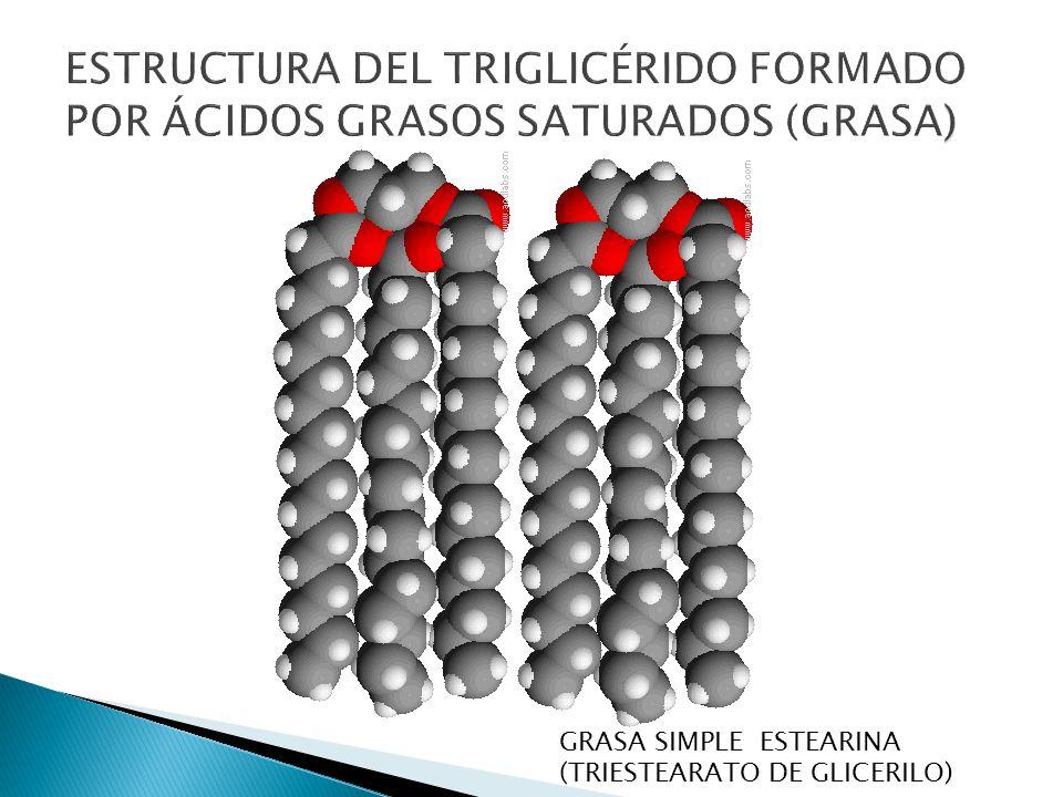 GRASA SIMPLE ESTEARINA (TRIESTEARATO DE GLICERILO)