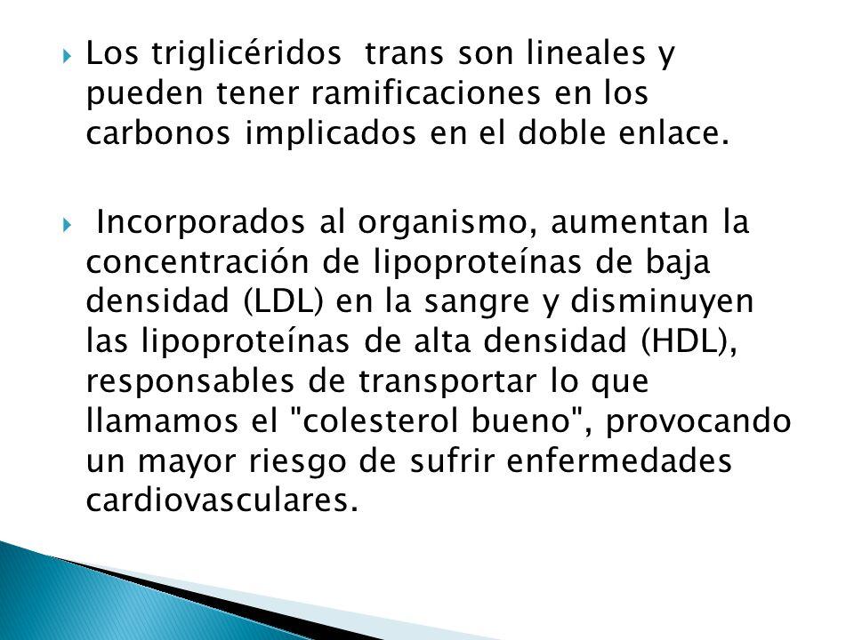 Los triglicéridos trans son lineales y pueden tener ramificaciones en los carbonos implicados en el doble enlace. Incorporados al organismo, aumentan