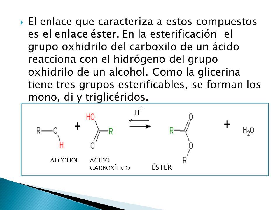 El enlace que caracteriza a estos compuestos es el enlace éster. En la esterificación el grupo oxhidrilo del carboxilo de un ácido reacciona con el hi