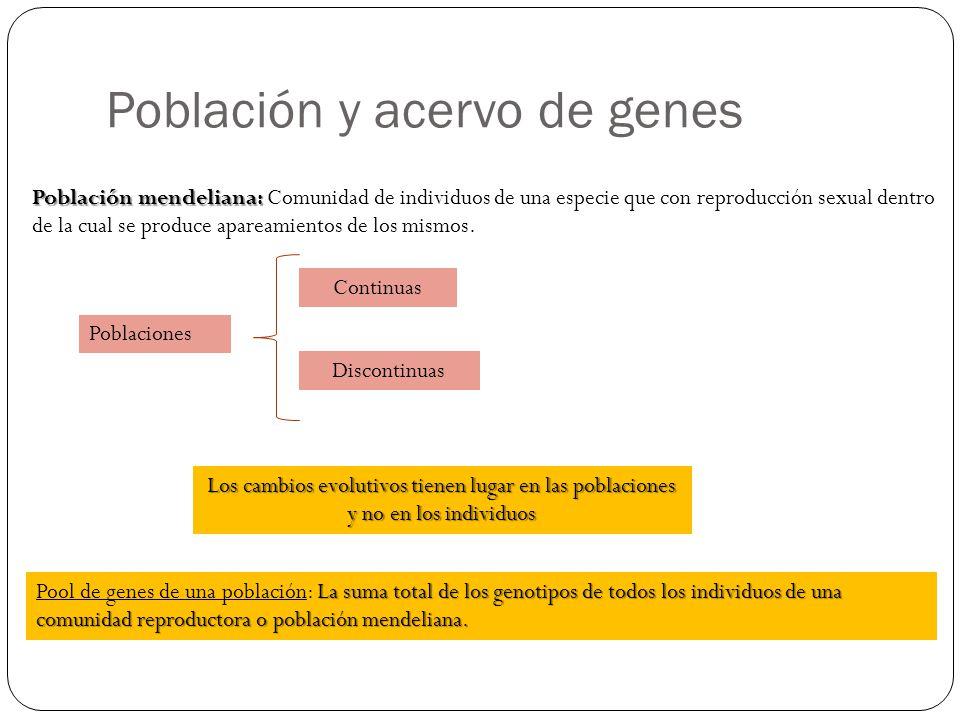 Población y acervo de genes Población mendeliana: Población mendeliana: Comunidad de individuos de una especie que con reproducción sexual dentro de l