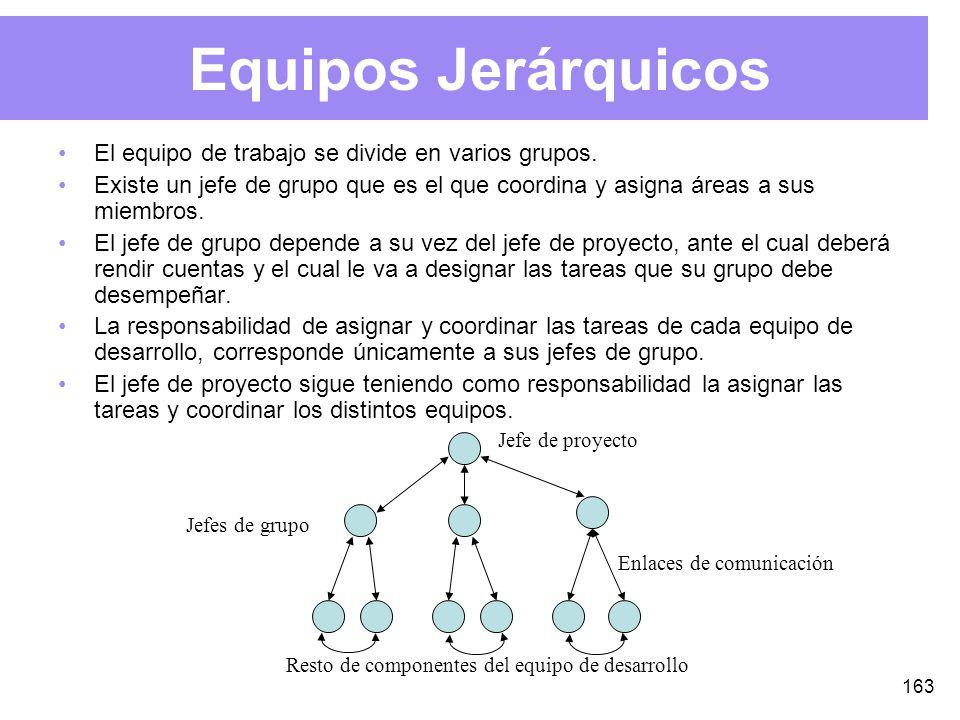 163 Equipos Jerárquicos El equipo de trabajo se divide en varios grupos.