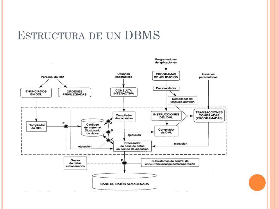 E STRUCTURA DE UN DBMS