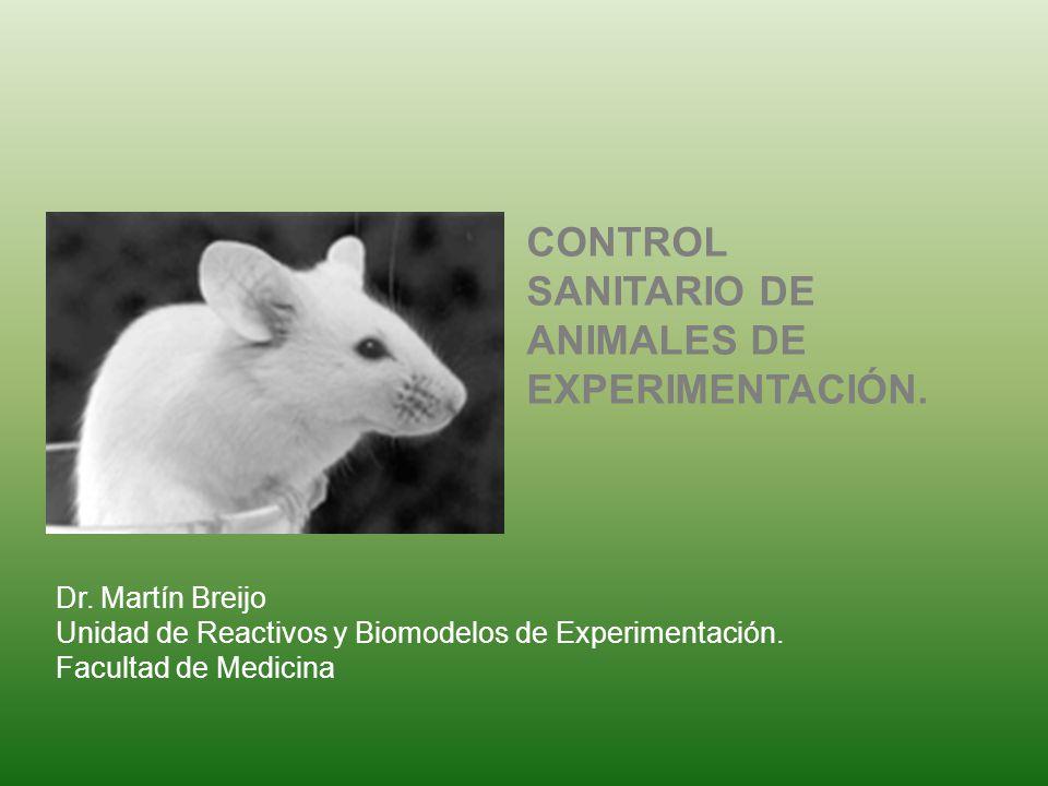 Dr. Martín Breijo Unidad de Reactivos y Biomodelos de Experimentación. Facultad de Medicina CONTROL SANITARIO DE ANIMALES DE EXPERIMENTACIÓN.