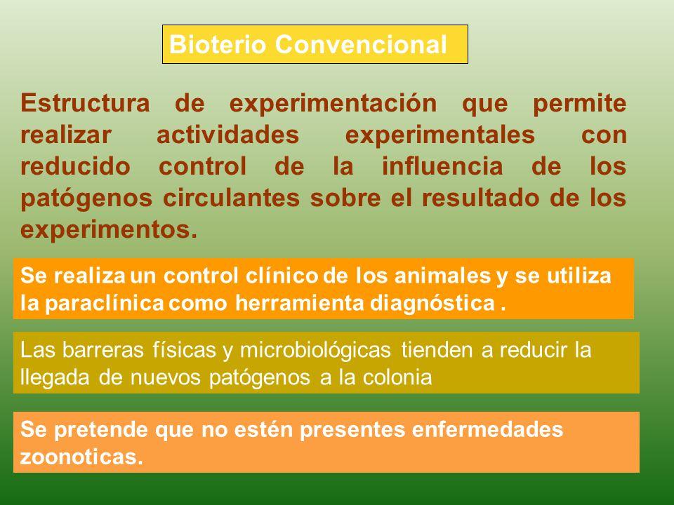 Bioterio Convencional Se pretende que no estén presentes enfermedades zoonoticas. Estructura de experimentación que permite realizar actividades exper