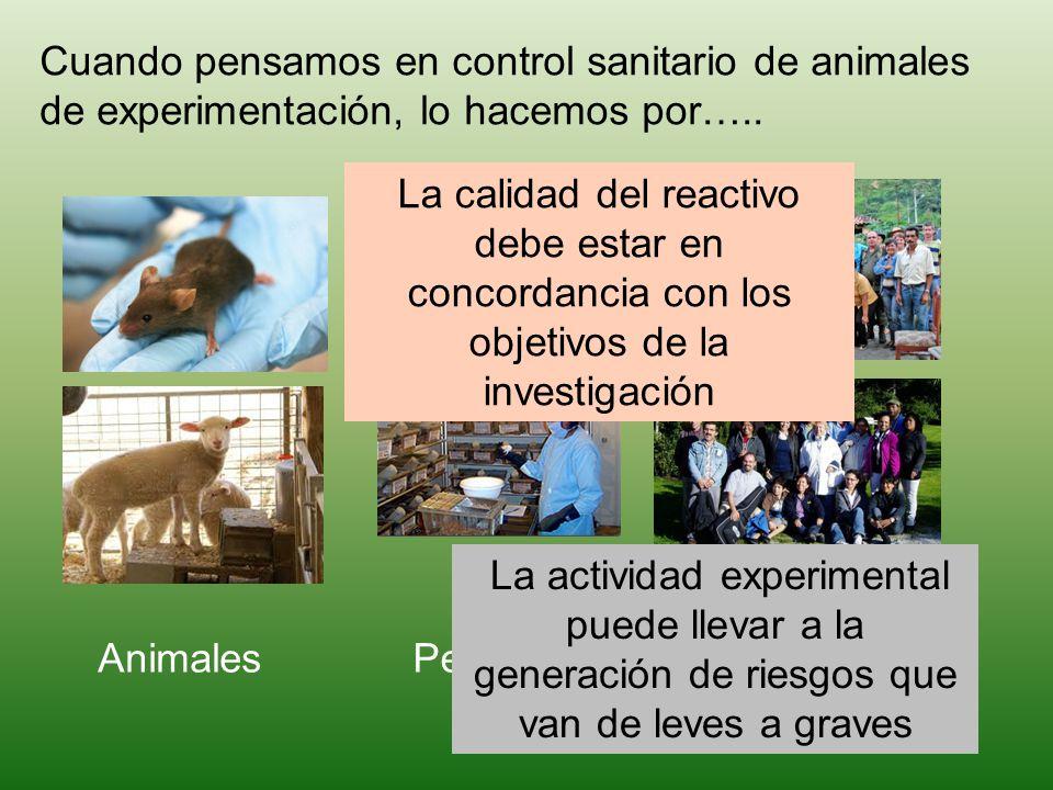 Cuando pensamos en control sanitario de animales de experimentación, lo hacemos por….. AnimalesPersonalComunidad La calidad del reactivo debe estar en