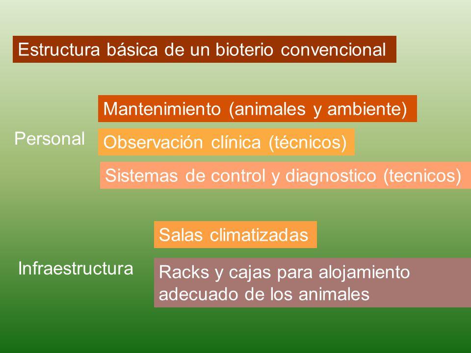 Estructura básica de un bioterio convencional Personal Mantenimiento (animales y ambiente) Observación clínica (técnicos) Sistemas de control y diagnostico (tecnicos) Infraestructura Salas climatizadas Racks y cajas para alojamiento adecuado de los animales