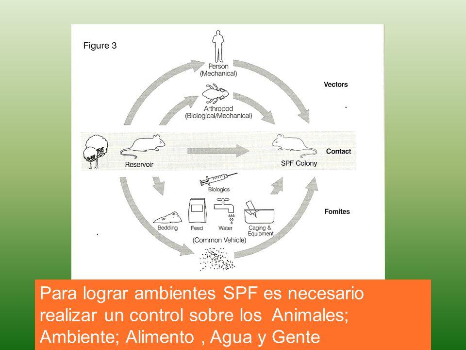 Para lograr ambientes SPF es necesario realizar un control sobre los Animales; Ambiente; Alimento, Agua y Gente
