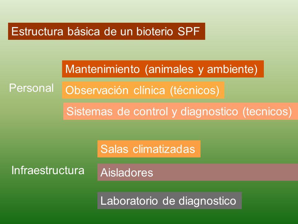 Estructura básica de un bioterio SPF Personal Mantenimiento (animales y ambiente) Observación clínica (técnicos) Sistemas de control y diagnostico (tecnicos) Infraestructura Salas climatizadas Aisladores Laboratorio de diagnostico