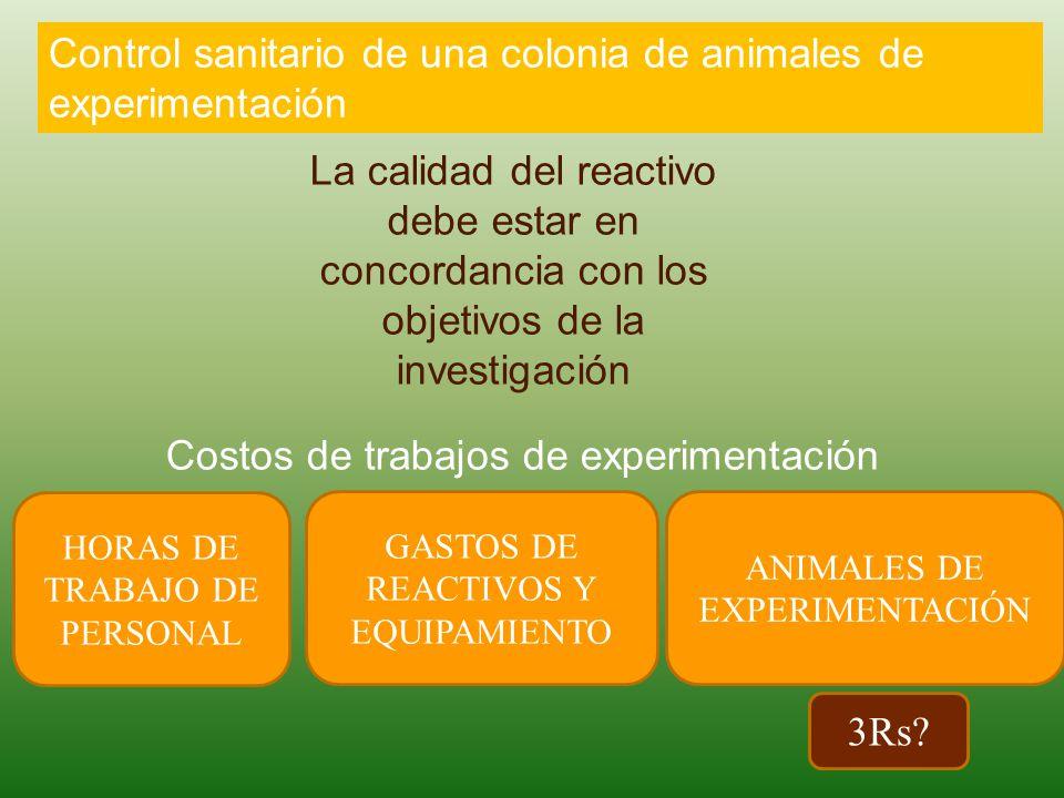 Control sanitario de una colonia de animales de experimentación La calidad del reactivo debe estar en concordancia con los objetivos de la investigación HORAS DE TRABAJO DE PERSONAL GASTOS DE REACTIVOS Y EQUIPAMIENTO ANIMALES DE EXPERIMENTACIÓN Costos de trabajos de experimentación 3Rs?