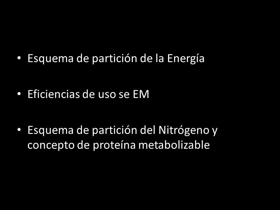 Esquema de partición de la Energía Eficiencias de uso se EM Esquema de partición del Nitrógeno y concepto de proteína metabolizable