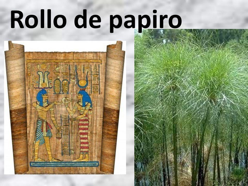 Rollo de papiro