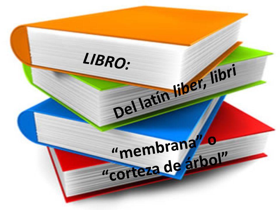 Conjunto de muchas hojas de papel u otro material semejante que, encuadernadas, forman un volumen.