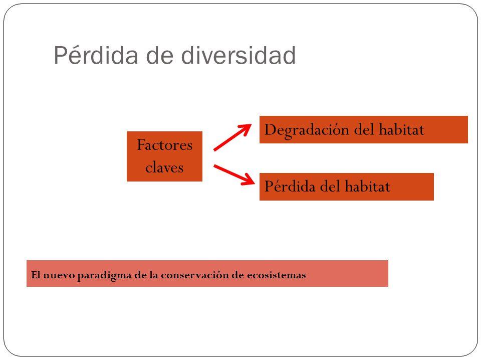 Pérdida de diversidad Pérdida del habitat Degradación del habitat El nuevo paradigma de la conservación de ecosistemas Factores claves