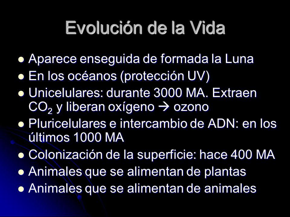 Evolución de la Vida Aparece enseguida de formada la Luna Aparece enseguida de formada la Luna En los océanos (protección UV) En los océanos (protecci