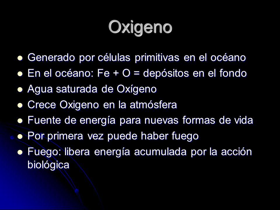 Oxigeno Generado por células primitivas en el océano Generado por células primitivas en el océano En el océano: Fe + O = depósitos en el fondo En el o