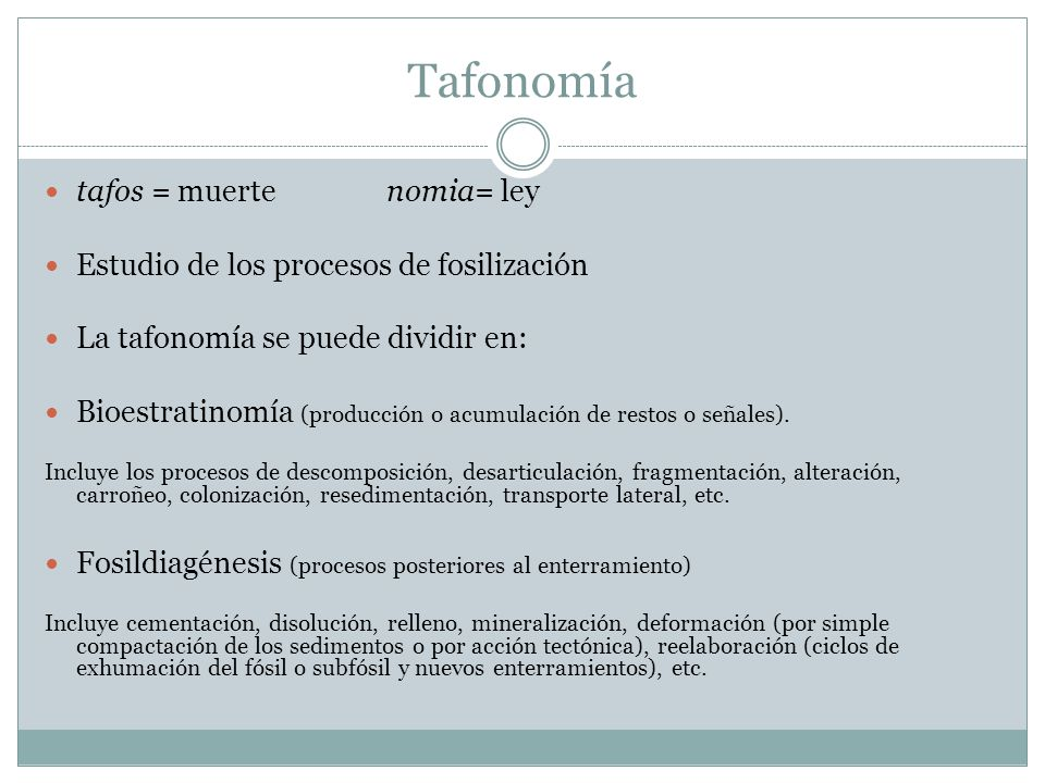 Tafonomía tafos = muerte nomia= ley Estudio de los procesos de fosilización La tafonomía se puede dividir en: Bioestratinomía (producción o acumulación de restos o señales).