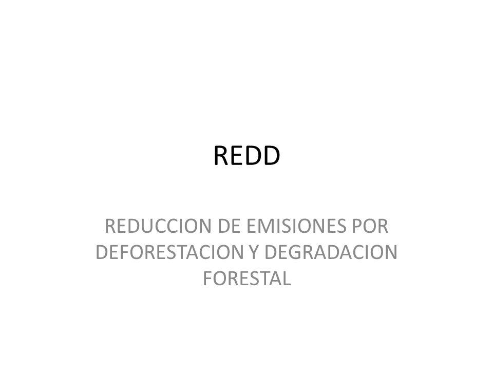 REDD REDUCCION DE EMISIONES POR DEFORESTACION Y DEGRADACION FORESTAL