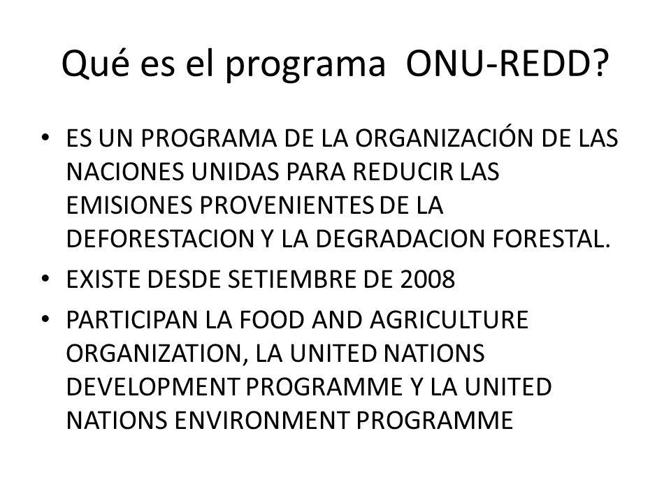 Qué es el programa ONU-REDD? ES UN PROGRAMA DE LA ORGANIZACIÓN DE LAS NACIONES UNIDAS PARA REDUCIR LAS EMISIONES PROVENIENTES DE LA DEFORESTACION Y LA