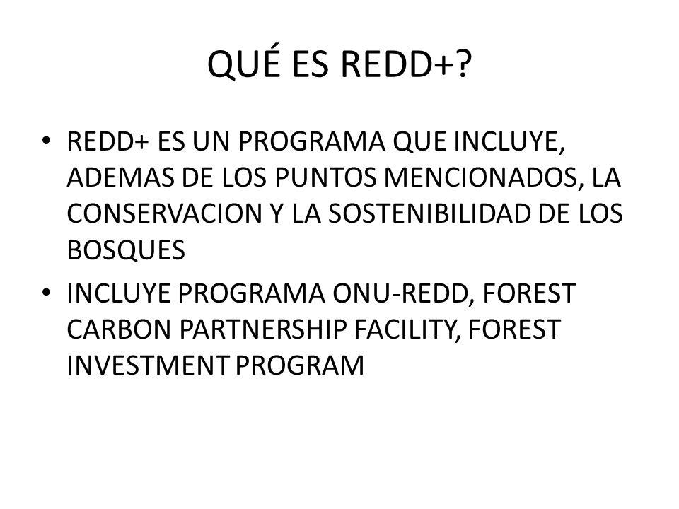 QUÉ ES REDD+? REDD+ ES UN PROGRAMA QUE INCLUYE, ADEMAS DE LOS PUNTOS MENCIONADOS, LA CONSERVACION Y LA SOSTENIBILIDAD DE LOS BOSQUES INCLUYE PROGRAMA